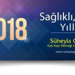 2018-yeni-yil-suheyla-gulen