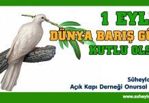1-eylul-dunya-baris-gunu-2019